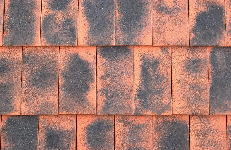 Norman Roof Tiles