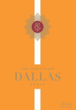 Scout Guide Dallas Vol. 10 Cover