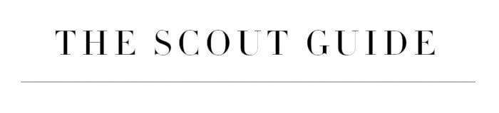 The Scout Guide Logo